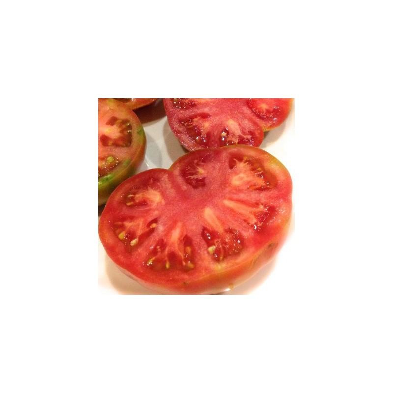 Tomate Valenciano
