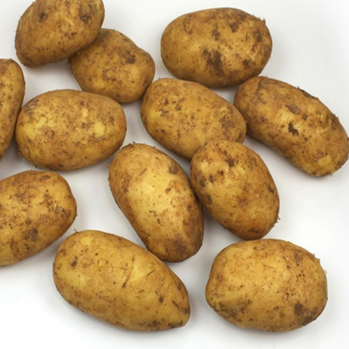 Patata Blanca 10 kilos