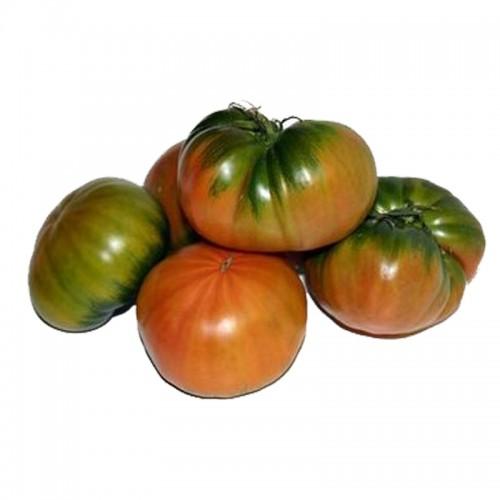 Tomate Raff