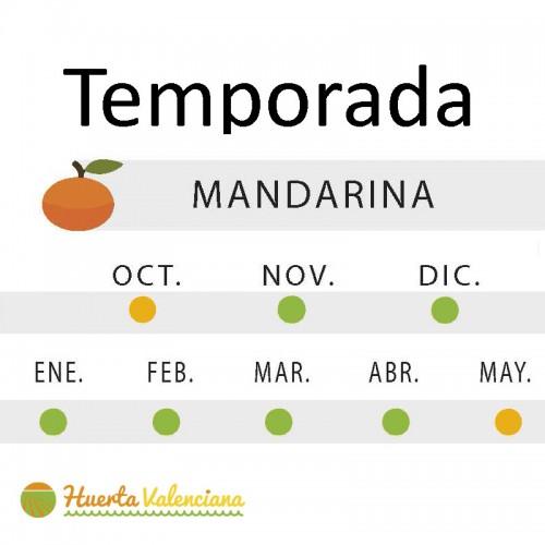 Mandarina Valenciana