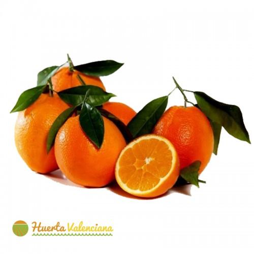 Jus d'orange et table 15 Kg