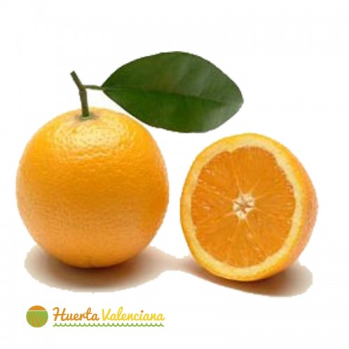 Orange Juice 15 Kilos
