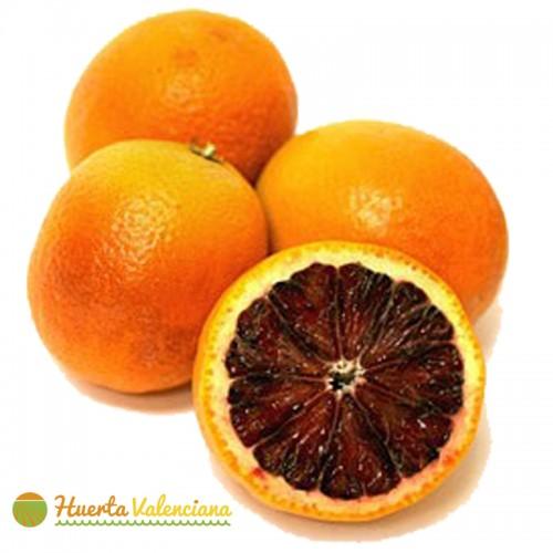 Naranja Saguinelli